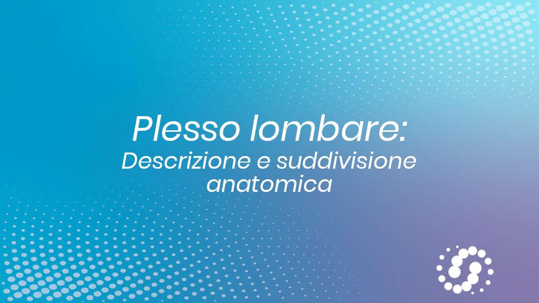 Anatomia plesso lombare