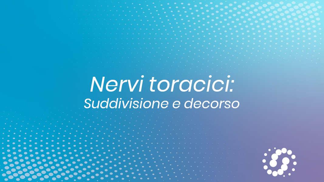 Nervo toracico