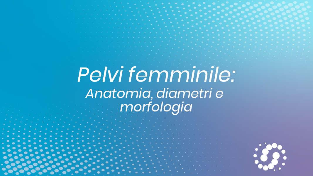 Pelvi femminile: anatomia, diametri e morfologia