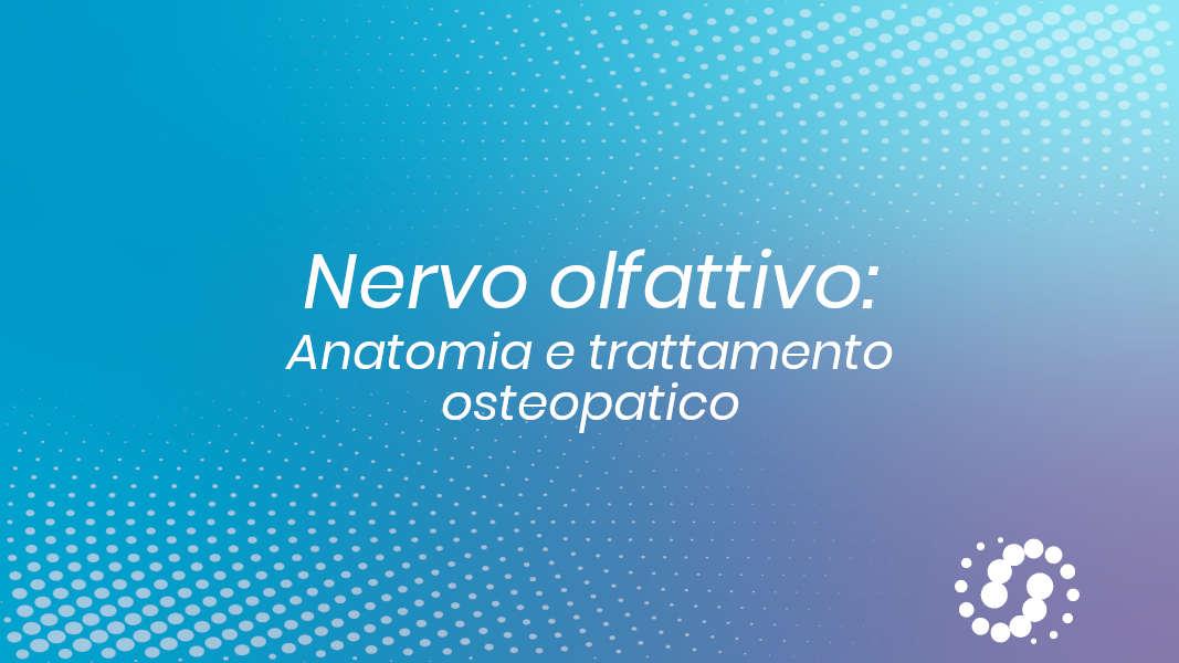 I nervo cranico