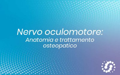 Nervo oculomotore: origine, funzione e decorso