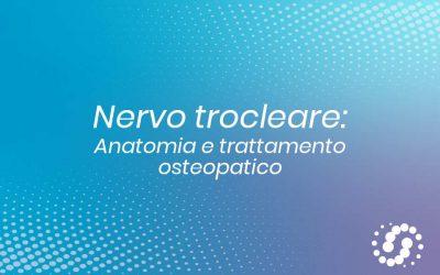Nervo trocleare: origine, funzione e decorso