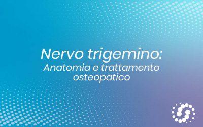 Nervo trigemino: origine, funzione e decorso