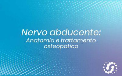Nervo abducente: origine, funzione e decorso