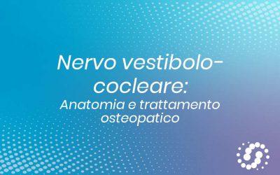 Nervo vestibolo cocleare:  origine, funzione e decorso