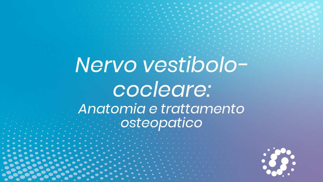 VIII nervo cranico