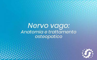 Nervo vago: origine, funzione e decorso