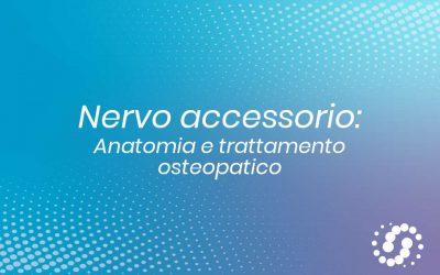 Nervo accessorio: origine, funzione e decorso