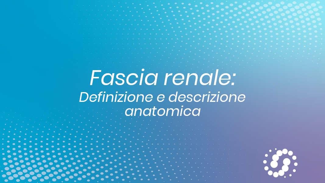 Fascia renale anatomia