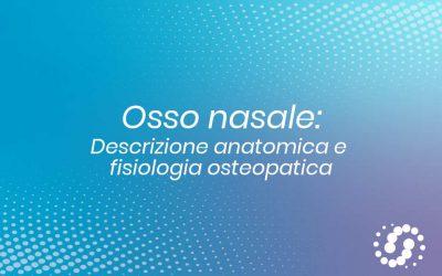 Osso Nasale: descrizione, cenni e rapporti anatomici