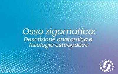 Osso Zigomatico: descrizione, cenni e rapporti anatomici
