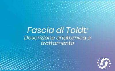 Fascia di Toldt: definizione, funzione e riferimenti anatomici