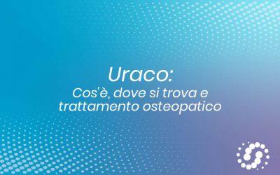 Uraco: cos'è, dove si trova e trattamento osteopatico