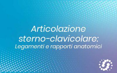 Articolazione Sterno-Clavicolare: descrizione anatomica
