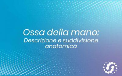 Ossa della Mano: descrizione e suddivisione anatomica