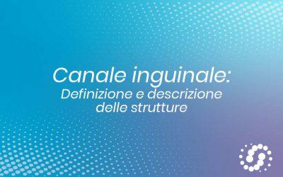 Canale inguinale: definizione e descrizione delle strutture