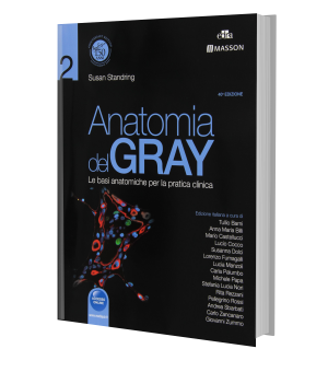 Anatomia del Gray vol2