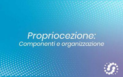 Propriocezione: componenti e organizzazione