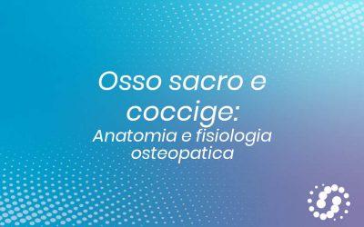 Sacro e coccige: descrizione e rapporti anatomici