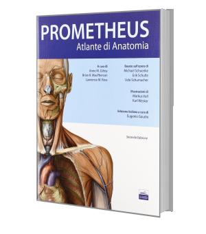 Atlante di anatomia umana Prometeus