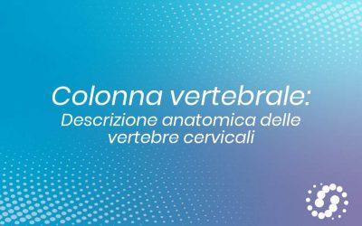 Vertebre cervicali: caratteristiche anatomiche specifiche