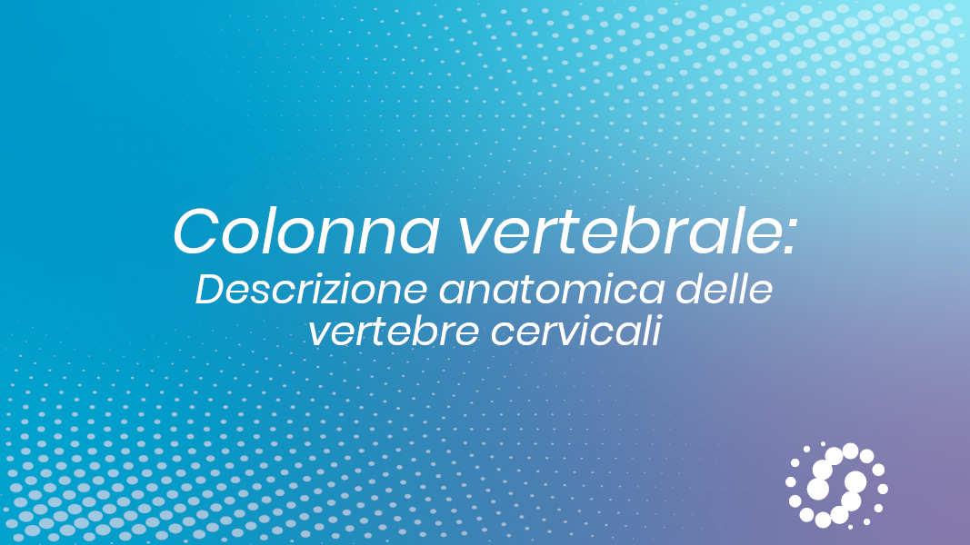 Vertebra cervicale