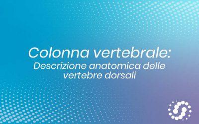 Vertebre dorsali: caratteristiche anatomiche comuni e specifiche