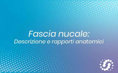 Fascia nucale: cos'è, l'anatomia e rapporti anatomici
