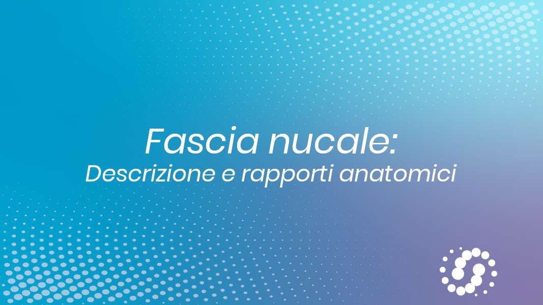 Fascia nucale anatomia