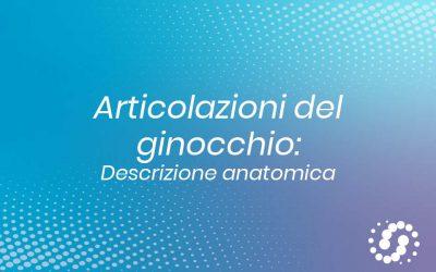 Articolazione del ginocchio: descrizione anatomica delle strutture