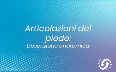 Articolazioni del piede: suddivisione e descrizione anatomica