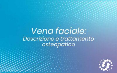 Vena faciale: funzione e sintomi del mancato drenaggio