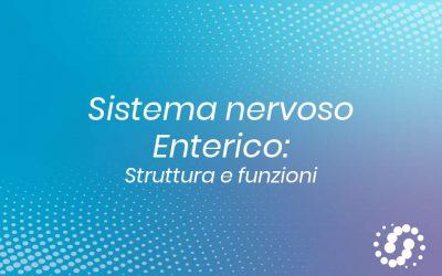Sistema nervoso enterico: struttura e funzioni