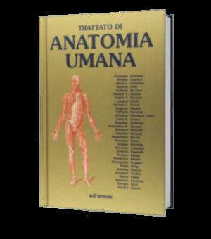 Anatomia anastasi locomotore