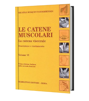 Catene muscolari vol 6